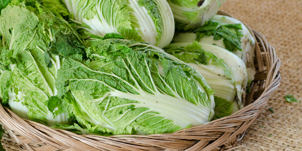冬の美容食材「白菜」の魅力とおすすめレシピ